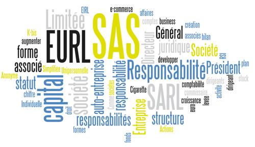 La Société Par Actions Simplifiée (S.A.S.)